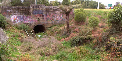 Before 1987, Mill Stream passed beneath Barry Road through this culvert. The stream bed between the culvert and Speak's Quarry used to be a water race. Water still flows during heavy rain. 2008