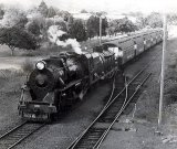 The last Auckland-Taneatua passenger express
