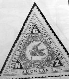 New Zealand's first airmail stamp used by pigeon post.