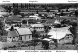 A View of Paeroa from Primrose Hill. c 1939