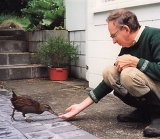 Gary Staples hand feeding a weka